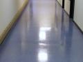 box_hallwayfloor